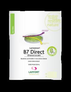 LACTOENOS B7 Direct